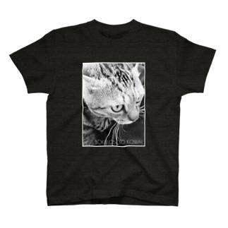 BOKU OSOTO KOWAI.(白枠) T-shirts
