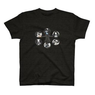 FNAWIP2020 glay T-shirts