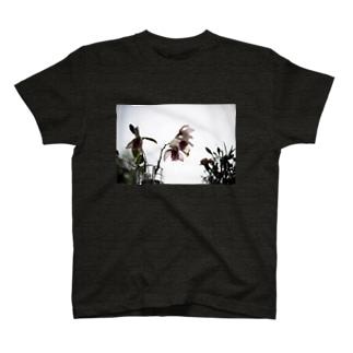 散り際Tシャツ T-shirts