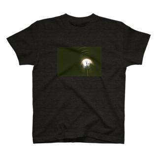 トンネルの光 T-Shirt