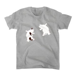 はりつく子猫 Tシャツ