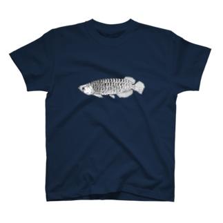 arowana Tシャツ
