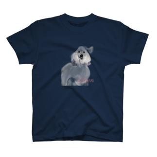 Lilien T-shirts