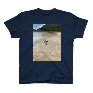 種子島ネコ T-shirts