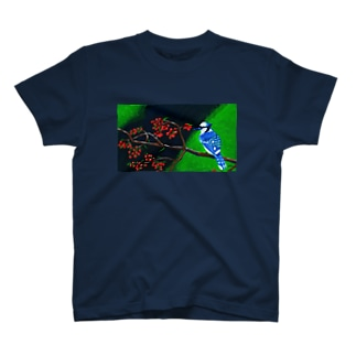 アオカケス T-shirts