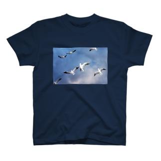 カモメ・ハレルヤ T-shirts