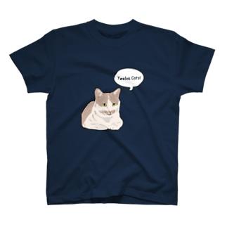 COMIC! 5 T-shirts