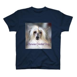 チャイクレ つむぎバージョン T-shirts
