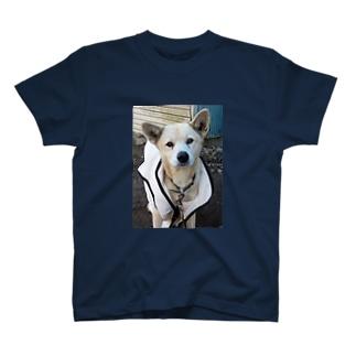 雑種犬(第3の犬)ニコニコ笑う T-shirts