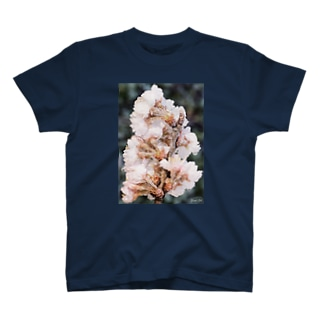 Frozen flower  T-shirts