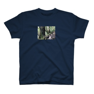 BjjBa4の屋久島の森 T-shirts