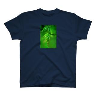 葉としずく T-shirts