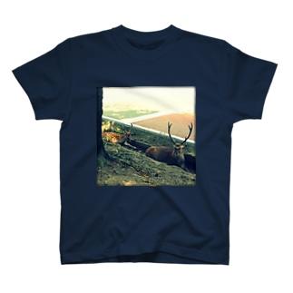 地上の楽園 T-shirts