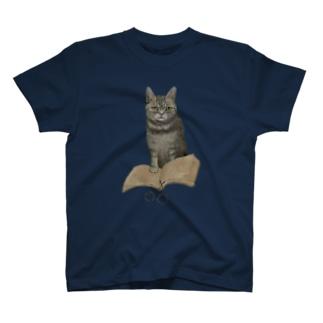 Washiemon and Ai-chan's ShopのWisdom T-shirts