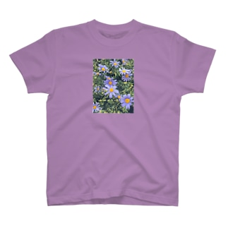 ブルーデージーの花言葉は? T-shirts