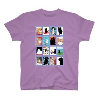 猫の窓藤色 T-Shirt