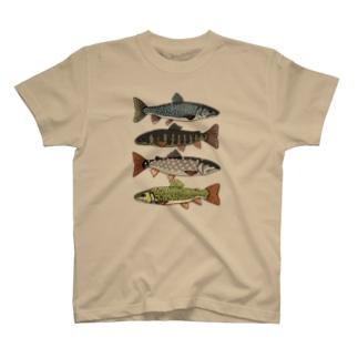 Salvelinus T-shirts