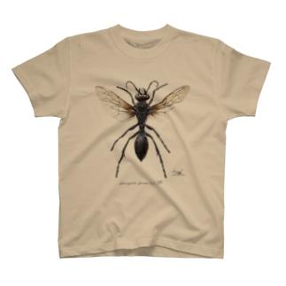 クロアナバチ Sphex argentatus fumosus  T-shirts