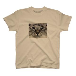 コタローTシャツ T-shirts