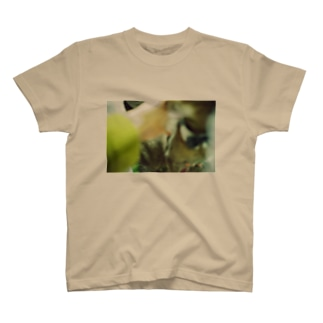 ぼけみち T-shirts