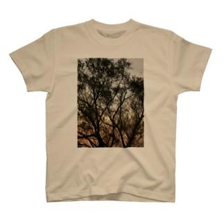 日は落ちて T-shirts
