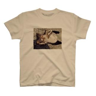 ねこのおっちゃん・リラックスタイム T-shirts