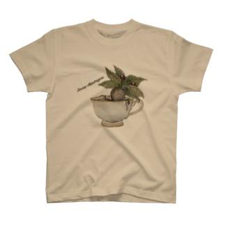 ティーカップマンドラゴラ T-shirts