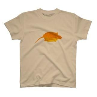 オオアタマガメ T-shirts