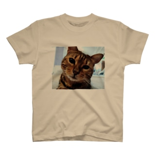 キビお話ししましょ T-shirts