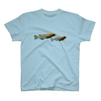 メダカ ver.Beniazami T-shirts