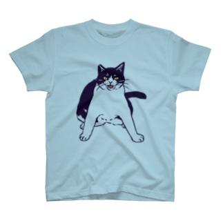 ここを通りたければ俺を倒して行け T-shirts