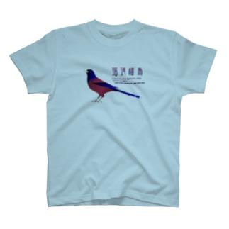 ルリカケス T-shirts