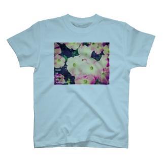 PETUNIA T-shirts