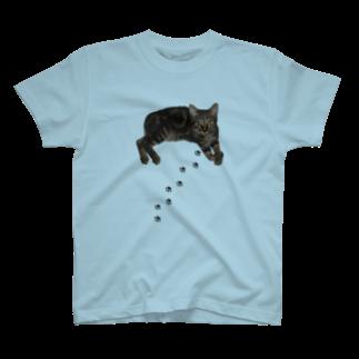 Lufasのきぃちゃん T-shirts
