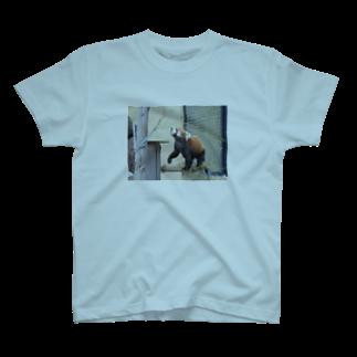 きしの動物園のレッサーパンダ T-shirts