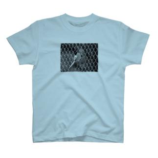 オナガ モノクロ フォトT T-shirts