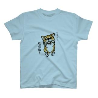 得意げな柴犬(赤柴) T-shirts