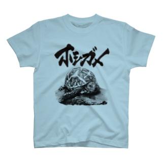 インドホシガメ(題字あり) | Geochelone elegans T-Shirt