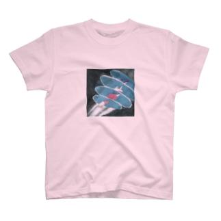 Exposure Tシャツ