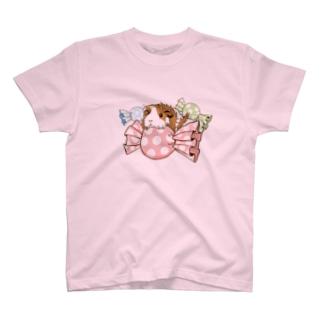 キャンディとモルモット(透過) Tシャツ