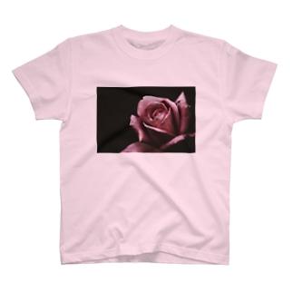 Classic Rose Tシャツ