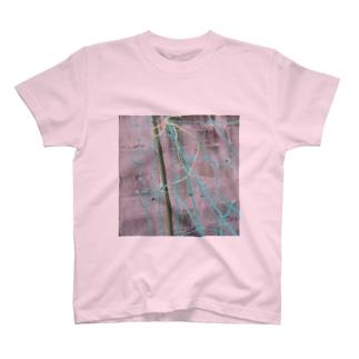 あみあみ Tシャツ
