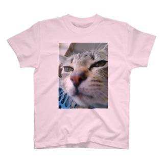 ニャンタですがなにか? T-shirts