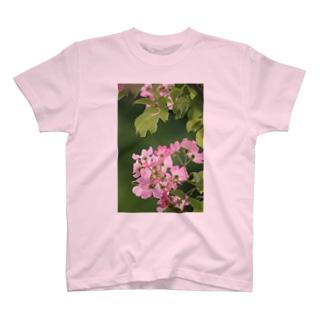 見つけて楽しい T-shirts