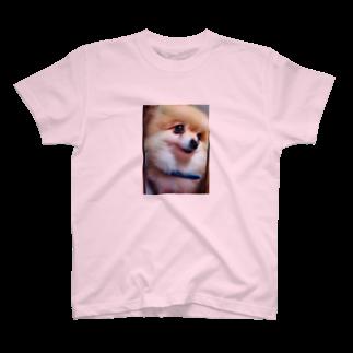 生駒愛のポメラニアン T-shirts