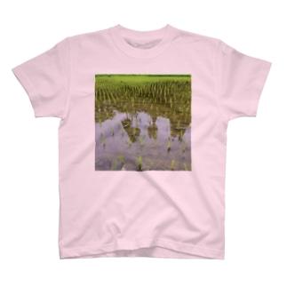 たんぼ T-shirts