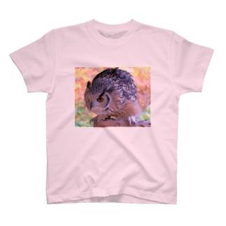 まんまるフクロウ T-shirts