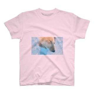 ☻ ⓝɐⓣsⓤʞⓞ ☻の穀物ズのプール日和2 T-shirts