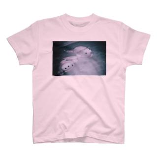 ただようブーとブー吉 T-shirts