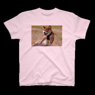 (初代)ヒトリ イシカワの撤去 T-shirts